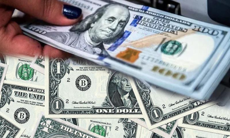 dolar costo